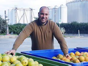 Da Freshplaza.it / Crescono in Sicilia i frutteti di melograno sull'onda del successo del succo